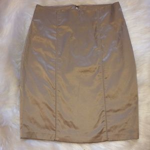 Silk Fitted Skirt